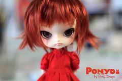 Ponyo_Sesion01_05 (Sheryl Designs) Tags: