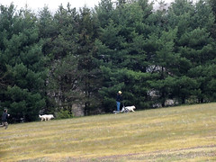 """OH NO, We Are Being Chased By A Quadcopter Pilot… • <a style=""""font-size:0.8em;"""" href=""""http://www.flickr.com/photos/96196263@N07/9351138773/"""" target=""""_blank"""">View on Flickr</a>"""