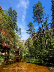 West Fork Oak Creek Trail - Sedona (Artvet) Tags: arizona sedona westforkoakcreektrail