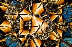 LABIRINTO DE ESPELHOS -  (86) (ALEXANDRE SAMPAIO) Tags: light luz linhas brasil arte imagens mosaico contraste fractal beleza colagem formas desenhos franca reflexos fantstico espelhos ritmo volume experimento criao detalhes montagem iluminao geometria realidade labirinto formao irreal cubismo tridimensional composio multiplicidade recortes criatividade estrutura imaginao esttica pontodevista possibilidade experimentao caleidoscpio fragmentos deformao inteno mltiplo fragmentao transcendncia irrealidade alexandresampaio intencionalidade labirintodeespelhos
