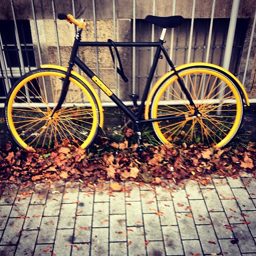 Herbstfarben Autumn colors #bicycle #darmstadt
