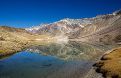 Mirrored Mornings...Chandratal (CoSurvivor) Tags: lake mountains reflection landscape himalaya himachal moonlake chandratal highaltitudelake spitivalley waterbody glacialwaters