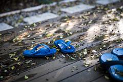 Project 365 [296/365] - Flops (Micaiah Koh) Tags: canon backyard sandals ii flipflops l flops usm f28 6d 2470mm project365
