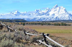 236e  magnificent Tetons (jjjj56cp) Tags: autumn mountains fall fence landscape october sage aspens grandtetons plains tetons jacksonhole snowcovered mygearandme mygearandmepremium mygearandmebronze flickrstruereflection1 jennypansing