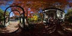 Fall Colors, Ukiah