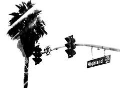 highlandave (pjc990) Tags: sky white black tree green lights strret