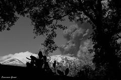 Etna eruption of 23 November 2013 (4) (.Francine.) Tags: landscape lava etna eruption cenere eruzione