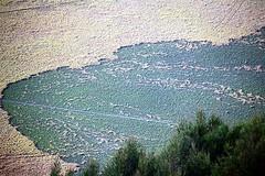 Bromo Tengger Semeru National Park (Ahmad Fuad Morad) Tags: indonesia bromo mountbromo eastjava jawatimur bromotenggersemerunationalpark mountpananjakan tenggersandsea lautpasirtengger gunungpananjakan serunipoint teggercaldera kawahtengger