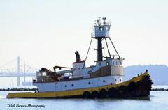 Elsbeth III_005 (Walt Barnes) Tags: canon eos boat ship vessel richmond calif tugboat tug sanpablobay workboat 60d canoneos60d eos60d elsbethiii smithmaritime wdbones99