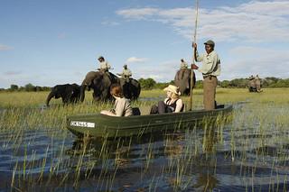 Botswana Okavango Delta Photo Safari 43