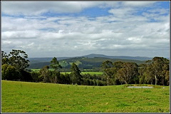 My Country (Rubio-Martinez) Tags: trees sky tree water field grass leaves clouds landscape denmark spring fuji dam farm hill farmland hills mount land eucalypts gumtrees x100 greatsouthern mountlindesay lindesay fujifilmx100