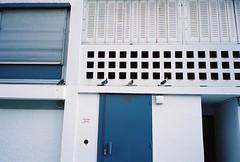 (Etienne Curtenaz) Tags: street film architecture 35mm pigeons streetphotography blocks analogue mjuii filmphotography