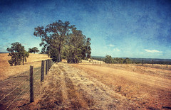(B.M.K. Photography) Tags: trees fence landscape countryside textures dirtroad countryroad textured memoriesbook