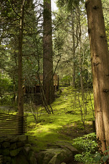 Portland Japanese Gardens, Oregon (Anna Calvert Photography) Tags: bridge flowers trees plants green nature water oregon forest reflections garden portland botanical moss spring pond scenery peace unitedstates blossoms culture tranquility experience harmony bonsai teagarden westhill pathways washingtonpark naturalgarden sandandstonegarden flatgarden portlandjapanesegardens 5gardens strollingpondgardens
