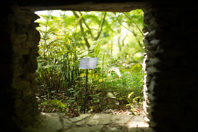 Botanical Garden 03