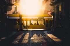 Linie 13 ♥ (Philipp Götze) Tags: street backlight dresden gegenlicht neustadt linie13
