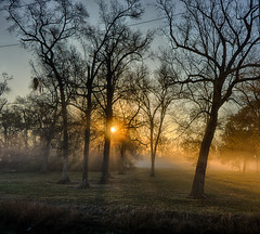 Morning Light (Uptown Denver Photography) Tags: morning misty fog countryside scenery texas unitedstates scenic danbury sunbeams colorefexpro nikonphotography