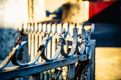 Verja Despeinada   ///   Disheveled Fence (Walimai.photo) Tags: españa metal fence spain nikon village rustic pueblo el chico salamanca disheveled 18105 verja rústico despeinada d7000 sahelices