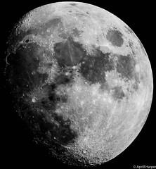 30jan15 Lunar (Wyld-Katt) Tags: moon lunar waxinggibbous