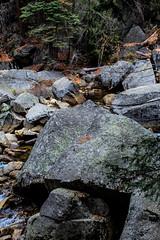 Yosemite Trip - Jan 2015 - 235 (www.bazpics.com) Tags: california park ca usa nature america landscape scenery unitedstates hiking national yosemite barryoneilphotography