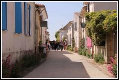 Promenade dans les rues de Talmont (Les photos de LN) Tags: fleurs maisons promenade ruelles talmont charentemaritime pittoresques