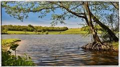 tang de Beauchamp (asterfred71) Tags: france landscape nikon lac wideangle tokina uga paysage bourgogne tang grandangle plandeau d7100 1120mm nikond7100