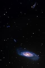 M106 (skypointer2000) Tags: longexposure night astro galaxy astrophotography astronomy celestron deepsky ngc4258 m106 hutech fitswork ngc4248 ngc4217 ngc4231 ngc4232 ngc4226 canoneos6d astromodified celestronnexstar8gps