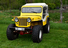 Willys Overland 1950. (Papa Razzi1) Tags: yellow spring jeep may 1950 willys overland 2016 7225 146365 saloonhillbilly