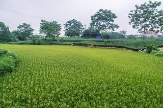 thai nguyen - vietnam 10