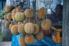 Love you Durian... (areyarey) Tags: travel bali food tree green nature fruits beautiful yellow fruit garden season indonesia asian foods healthy colorful asia king raw village natural skin display market sweet outdoor sale many traditional seasonal young harvest lifestyle tasty stall vegetable tourist fresh wanderlust delicious eat exotic smell durian passion tropical hanging spike prick produce local organic grocery agriculture thorn plenty seller tropics smelly climate ripe nutrition odour balinese thorny vitamin cultivate prickle areyarey