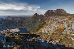 Cradle Mountain from Marion's Lookout (Steve Whitworth) Tags: nikon australia tasmania dovelake fagus cradlemountain marionslookout nikon1424mmf28 nikond800e