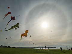 Solar Halo over Auckland 06/06/16 (jimjiraffe) Tags: park autumn cloud sun kite weather solar flying memorial fuji wind low halo kites auckland fujifilm breeze hilltop missionbay orakei xs1 mjsavage jimjiraffe