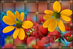 Flowers And Fruit (swong95765) Tags: blue red flower art beauty yellow digital strawberry bokeh taste weave eyecandy intoxicating mesmerizing
