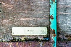 1976 # 18 # Nikon F3 Kodak Ektar100  - 2016 (irisisopen f/8light) Tags: 3 color colour analog nikon kodak f 100 farbe negativ ektar negativfilm farbnegativ irisisopen