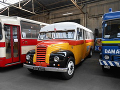 Maltese Fordson Thames 4D (miledorcha) Tags: bus ford thames museum glasgow transport malta exhibit route barbara restored service preserved maltese 4d fordson bridgeton gvvt et7 dby333 522xut