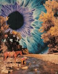 O olho (Beatriz Meneses) Tags: space art surrealism collage eye olho horse nature cavalos natureza psicodelia