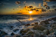 Golden Hour (DonMiller_ToGo) Tags: sky nature water outdoors florida sunsets beachlife hdr goldenhour 3xp caspersenbeach hdrphotography beachphotography d5500 sunsetmadness sunsetsniper
