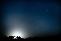 Sahara Stars (Fabian De Salvo Photography) Tags: africa travel wallpaper moon sahara stars ma lowlight sand nikon shadows desert camel morocco moonlight orient tamron camels marokko dromedar travelphotography d610 hassilabied meknestafilalet