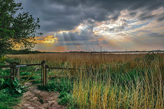 Footpath across the marsh (C.G.Photos) Tags: norfolk marsh eastanglia norfolkbroads