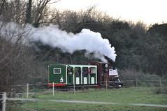 DSC_5518 (Hampton & Kempton Waterworks Railway.) Tags: devon 2014 santaspecial darent