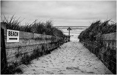 To the beach . (wayman2011) Tags: uk beach mono coast seaside northumberland alnmouth canon5d lightroom bwlandscapes wayman2011