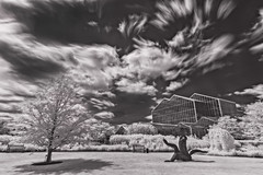 Infrared at Frederik Meijer Gardens (MichellePhotos2) Tags: park longexposure sky blackandwhite bw sculpture art gardens clouds ir nikon michigan conservatory tropical infrared grandrapids 20mm fmg meijer frederik westmichigan frederikmeijergardensandsculpturepark singhray tropicalconservatory d800e nikond800e