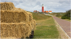 Texel, Netherlands (CvK Photography) Tags: lighthouse color netherlands canon coast spring europe nederland nl texel noordholland decocksdorp