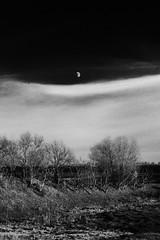 December soul (Kriss_Zeobrik ~~) Tags: moon nature rural moldova stoicani