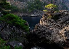 Sa_Calobra_1600 (psnikon) Tags: sacalobra mallorca nikon nikond700 nikon203528 2035 insel island spanien spain landschaft landscape ocean wasser meer natur nature breathtakinglandscapes felsen