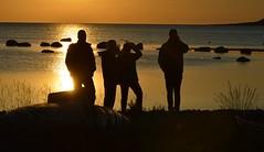Kronvald, Gotland (lena.fredin) Tags: sunset gotland