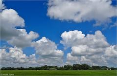 Heiteln - Homeland #41 (Hindrik S) Tags: heiteln homeland frysln friesland landscape lnskip clouds cloudhunting cloudhunter wolken wolk blue bluesky sky skytheme weather waar weer contrast green groen grien horizon kym kimen panorama landschap netherlands nederland nederlandvandaag sonydschx90v f35 41mm 12000 iso80