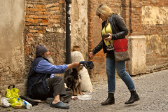 Verona (yrotori2) Tags: cane verona streetphoto città barbone mendicante perstrada povero elemosina instrada