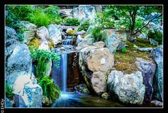 20160620Lumix1030395.jpg (hunter47d) Tags: lumix photoshoot dukegardens dpc