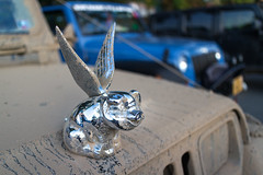 When Pigs Fly... (repete7 (back!)) Tags: canon pig wings unitedstates jeep mud pa butler hoodornament pigsfly jeepyj canoneosm canonefm22 bantamjeepfest butlerjeepinvasion
